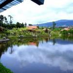 Grand Tebu Attraction - Lembang